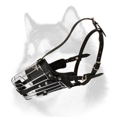 Leather padded metal muzzle for Husky