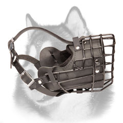 Siberian Husky wire cage dog muzzle for winter