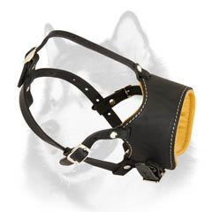 Smooth leather padded muzzle for Husky