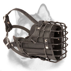 Winter wire cage dog muzzle with rubber covering