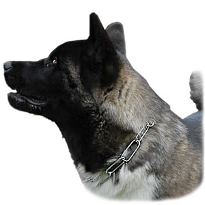 Prong Collars, Pinch Collars, Herm Sprenger Collars, Fur Save collars, Curogan dog collars, Neck Teck Prong Collars, Chain big dog collars, STEEL CHROMIUM PLATED Collars, Stainless Steel Collars