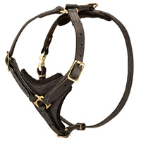 Super Luxury Royal Padded Leather Husky Harness