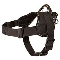 Siberian Husky Nylon Harness for Everyday