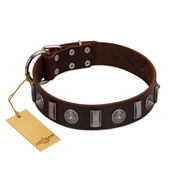 """Spiky Way"" FDT Artisan Brown Leather Siberian Husky Collar with Silver-Like Decorations"