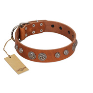 """Era Infinitum"" FDT Artisan Tan Leather Siberian Husky Collar Adorned with Chrome-plated Circles"