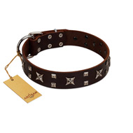 """Bigwig Woof"" FDT Artisan Brown Leather Siberian Husky Collar with Chrome Plated Stars and Square Studs"