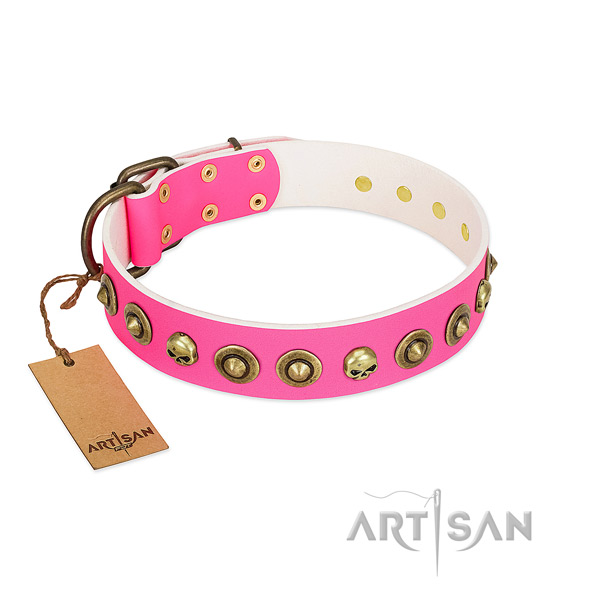 Unique natural leather dog collar with corrosion resistant decorations