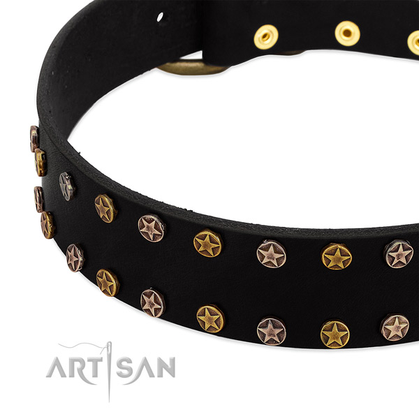 Fashionable adornments on leather collar for your canine