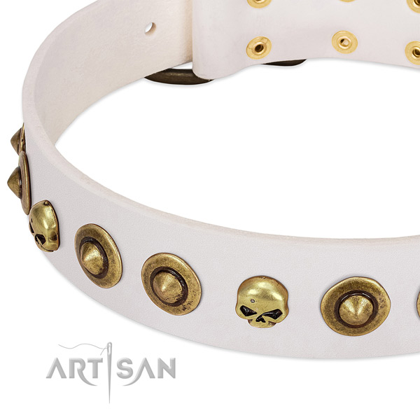 Remarkable decorations on genuine leather collar for your canine
