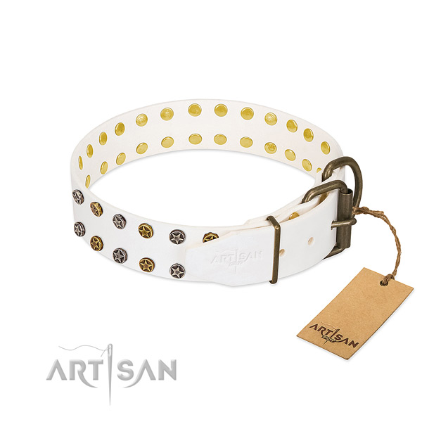 Trendy full grain genuine leather dog collar with corrosion proof adornments