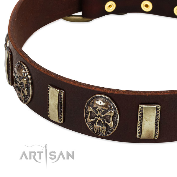 Strong buckle on full grain leather dog collar for your canine