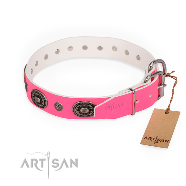 Everyday walking extraordinary dog collar with strong fittings