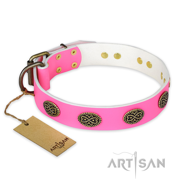 Awesome full grain leather dog collar for stylish walking