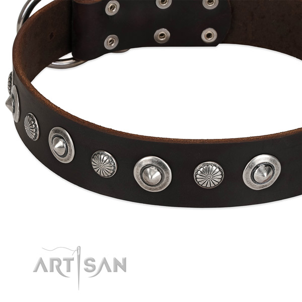 Trendy adorned dog collar of reliable full grain natural leather