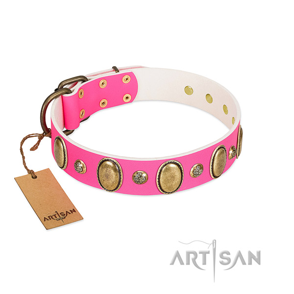 Walking top rate genuine leather dog collar with studs