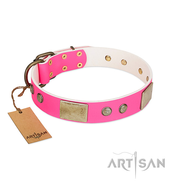 Easy to adjust full grain genuine leather dog collar for stylish walking your pet