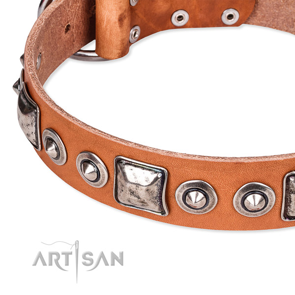 Quality leather dog collar handcrafted for your attractive pet