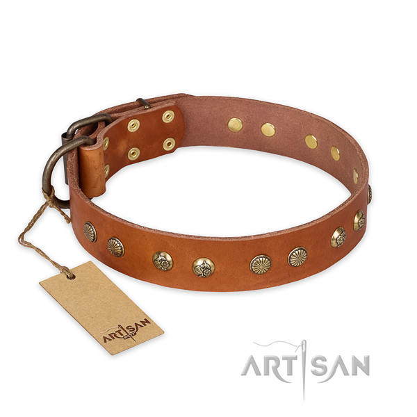 Handmade leather dog collar with durable fittings