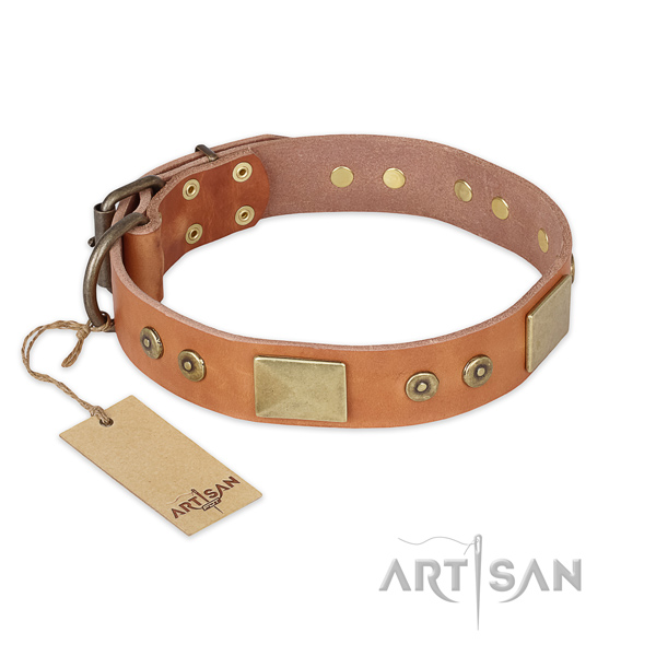 Comfortable leather dog collar for walking