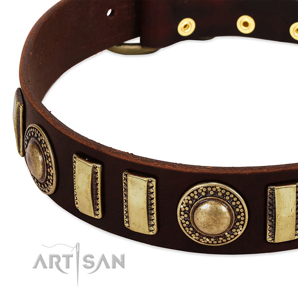 Quality full grain natural leather dog collar with strong traditional buckle