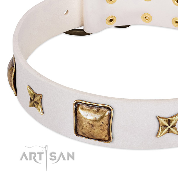 Reliable embellishments on full grain natural leather dog collar for your dog
