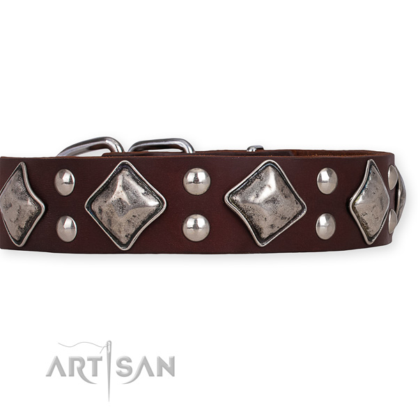 Full grain natural leather dog collar with stylish design rust-proof decorations