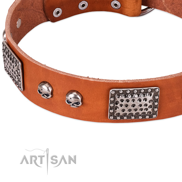 Rust-proof buckle on full grain genuine leather dog collar for your canine