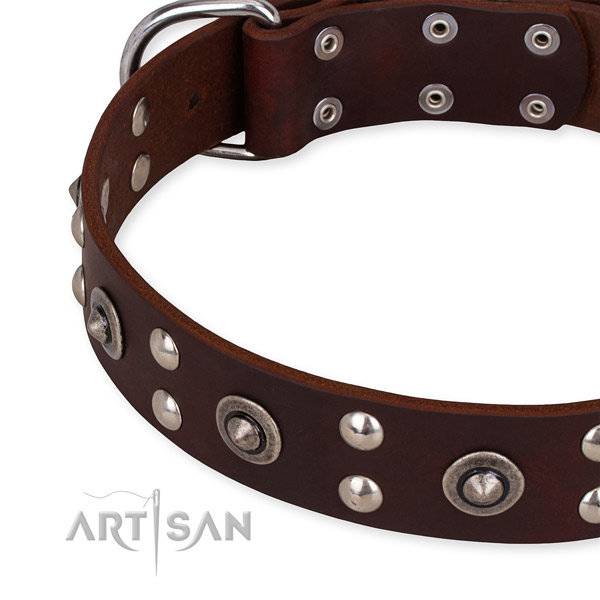Full grain leather collar with durable fittings for your handsome doggie