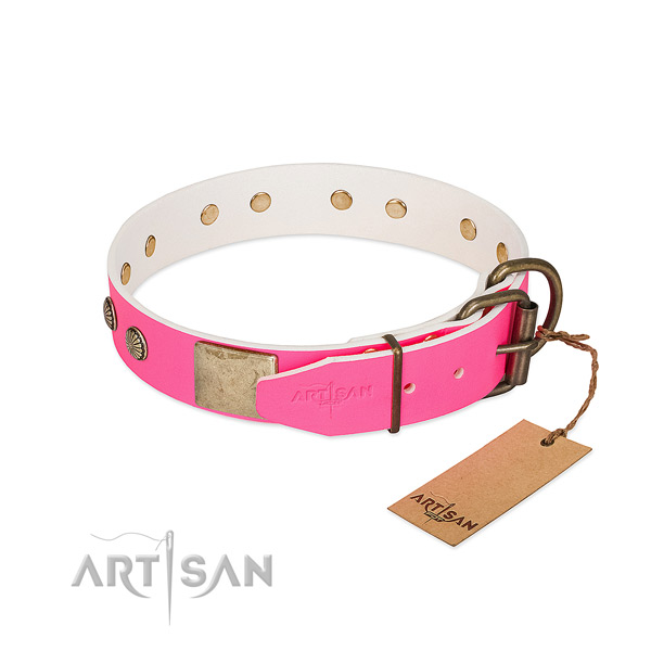 Rust-proof adornments on daily walking dog collar