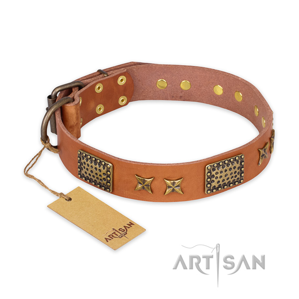 Unusual natural genuine leather dog collar with corrosion proof hardware