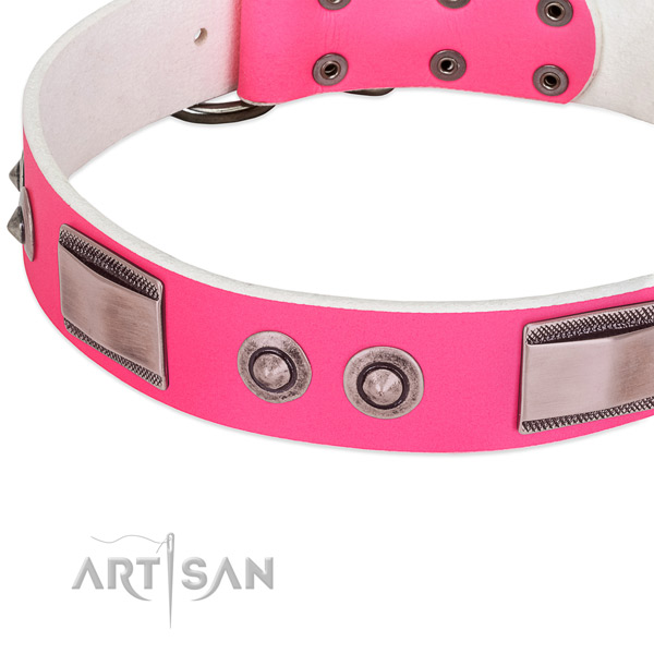 Fashionable leather collar with embellishments for your dog