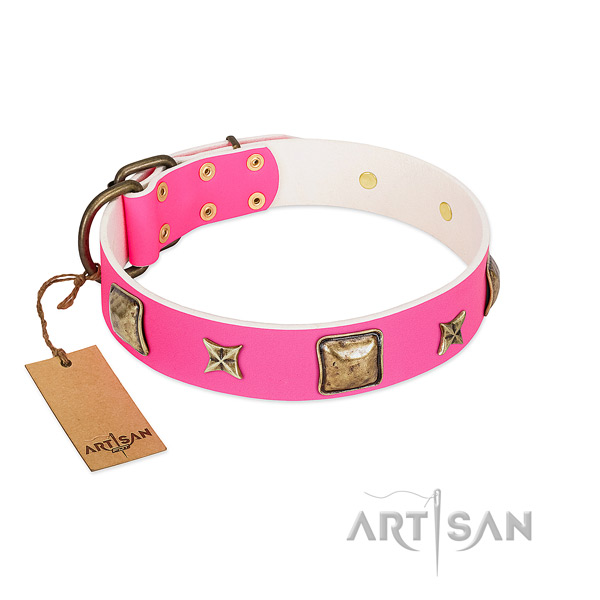 Genuine leather dog collar of quality material with awesome adornments