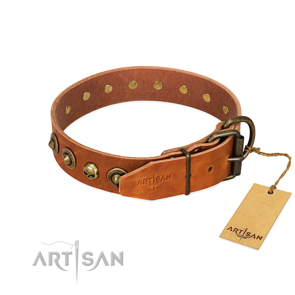 Full grain genuine leather collar with incredible embellishments for your four-legged friend