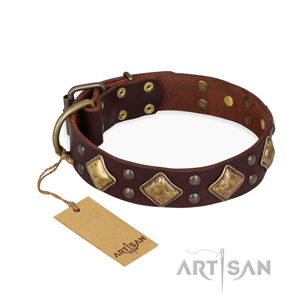 Handy use unique dog collar with corrosion resistant hardware