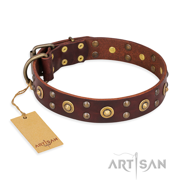 Fashionable genuine leather dog collar with rust-proof hardware