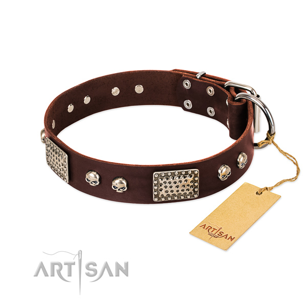 Easy wearing leather dog collar for stylish walking your four-legged friend