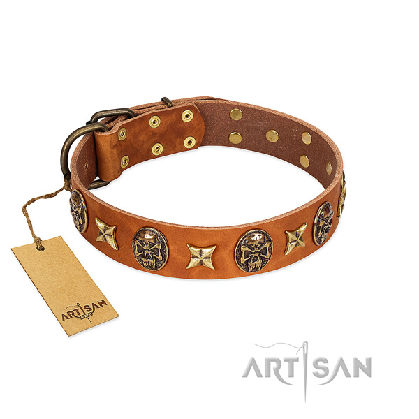 Unusual full grain leather collar for your pet