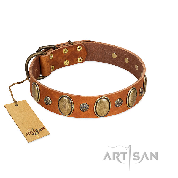 Fancy walking soft full grain leather dog collar with adornments
