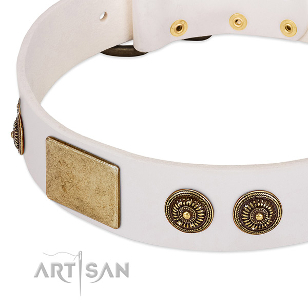 Stunning dog collar made for your lovely four-legged friend