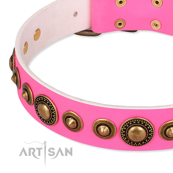 Flexible full grain natural leather dog collar handcrafted for your impressive canine
