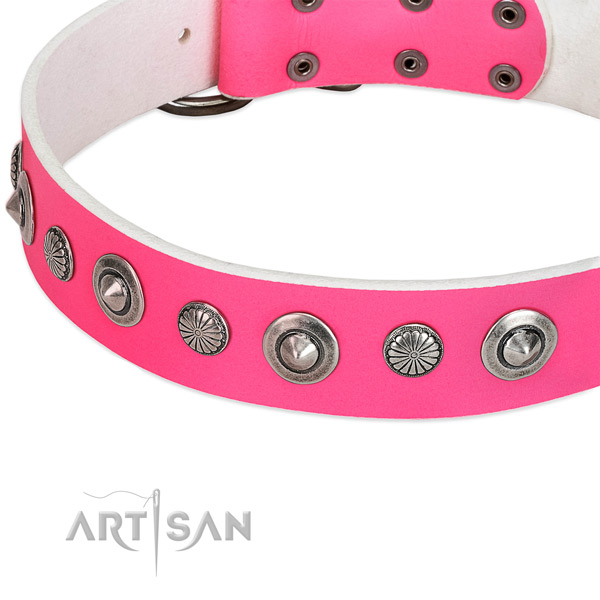Genuine leather collar with corrosion proof hardware for your beautiful dog