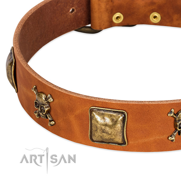 Exquisite genuine leather dog collar with corrosion resistant embellishments
