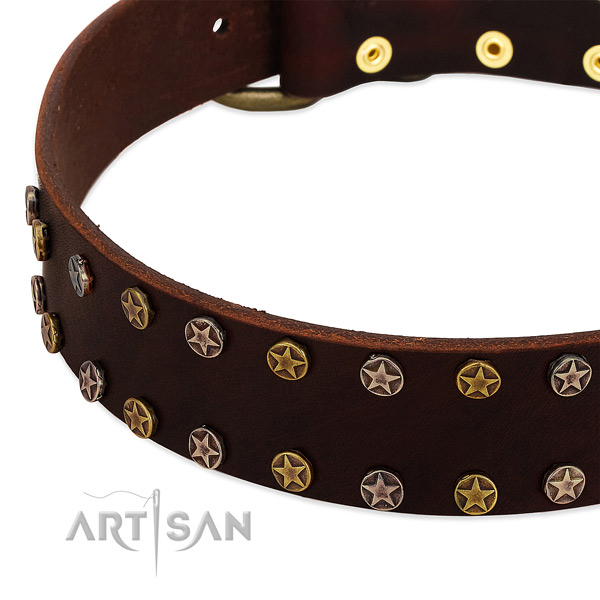 Everyday walking genuine leather dog collar with exceptional decorations