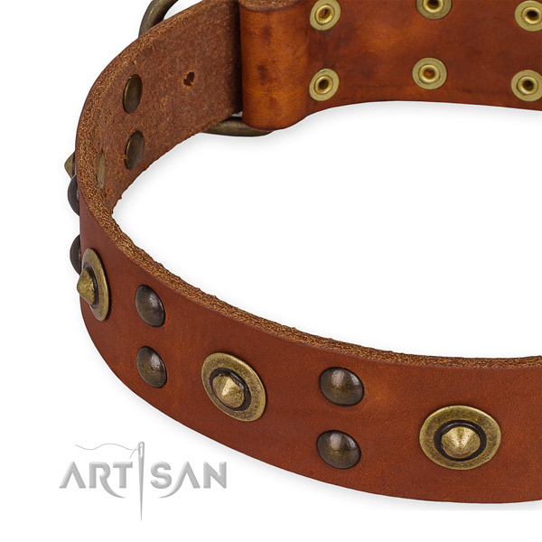 Genuine leather collar with rust resistant hardware for your beautiful pet