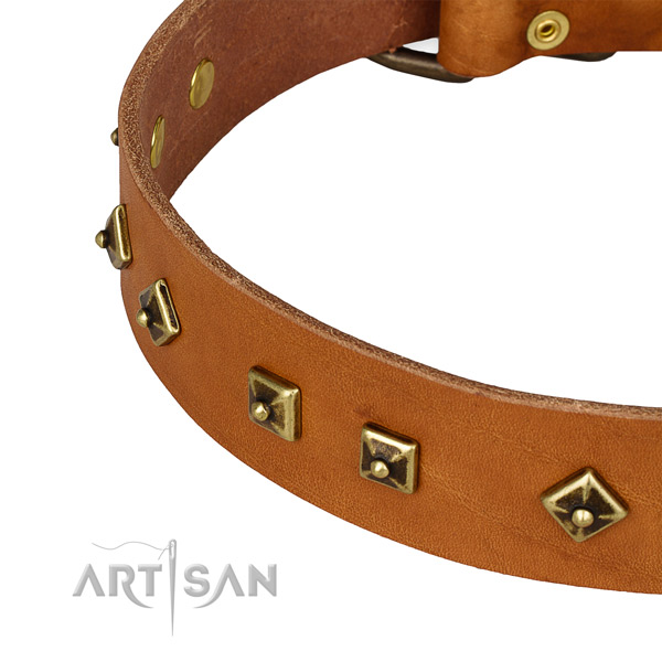 Remarkable genuine leather collar for your handsome four-legged friend