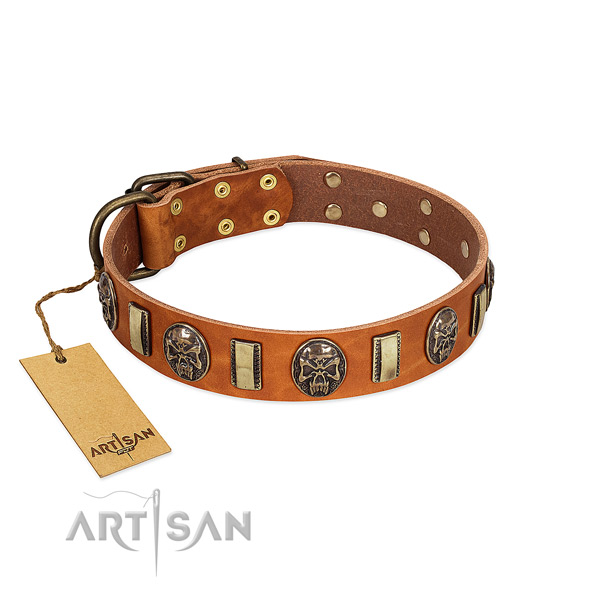 Awesome full grain leather dog collar for comfortable wearing