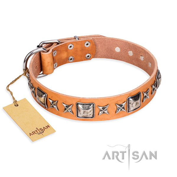 Fancy walking dog collar of best quality genuine leather with decorations