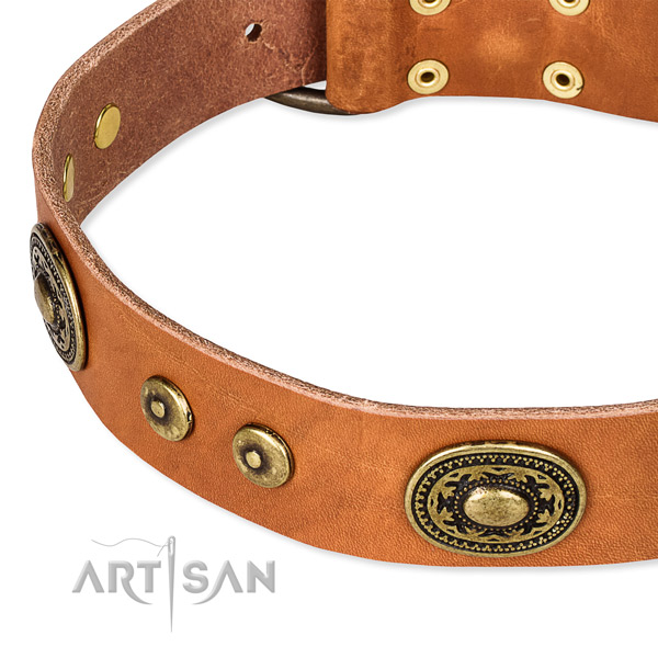 Genuine leather dog collar made of best quality material with adornments