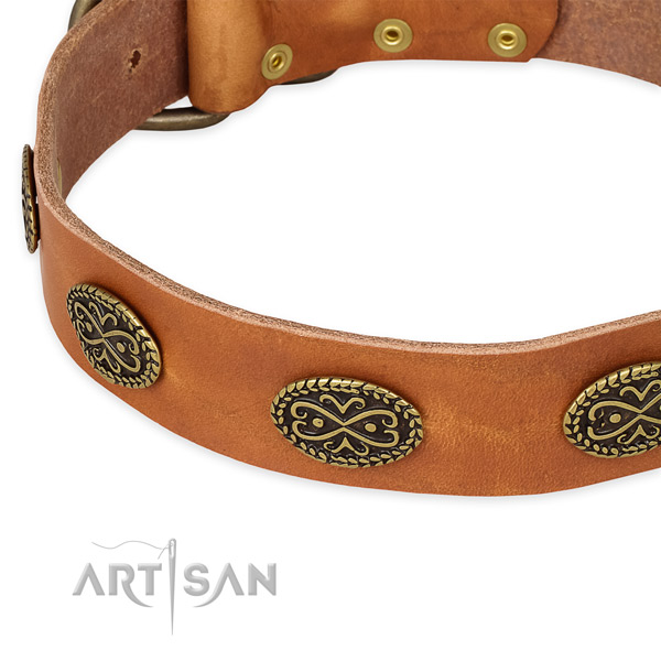 Studded full grain genuine leather collar for your stylish dog