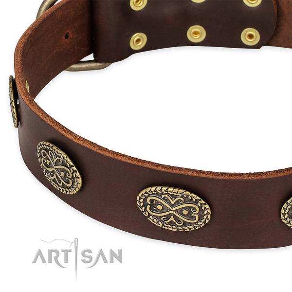 Studded full grain natural leather collar for your handsome doggie